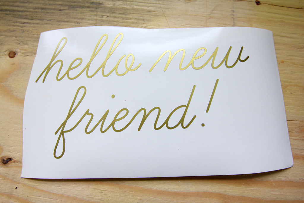 http://www.brokencitylab.org/wp-content/uploads/2012/05/IMG_8345.jpg Hello New Friend