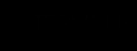 InTerminus Logo (Transparent)